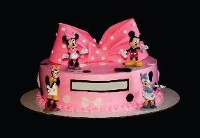Astonishing Disney World Birthday Cake Salem Cakes Funny Birthday Cards Online Elaedamsfinfo